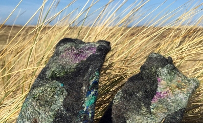 Felting on Terschelling