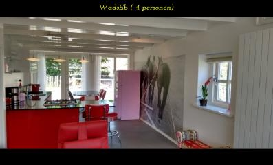 images/accommodaties/beachhouse/wadseb-keuken.jpg